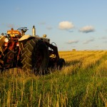 Tractor-and-Hay-Small-785829