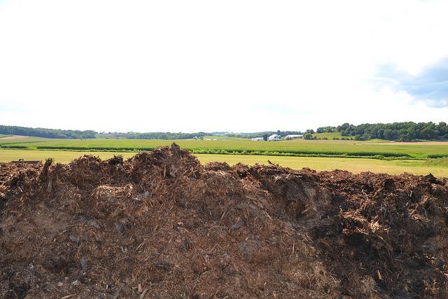 2014-8-18_image_composting_10