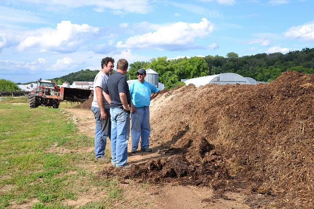 2014-8-18_image_composting_6